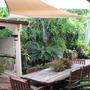 Our courtyard garden