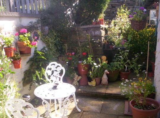 my patio