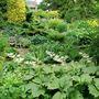 Bide A Wee Cottage pond garden