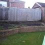 my little veg garden