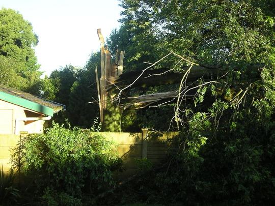Storm Damage 3 January 09