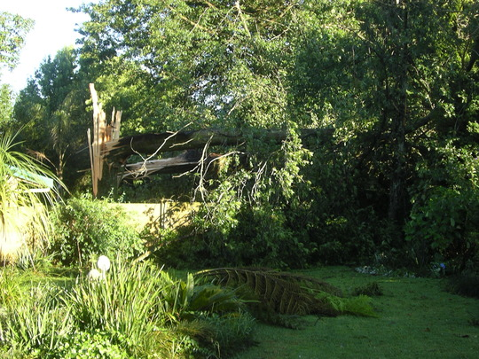 Storm damage 3 January 2009