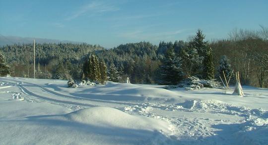 A good snow cover