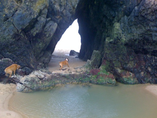 Going through the tunnel at Three Cliffs Bay at speed!