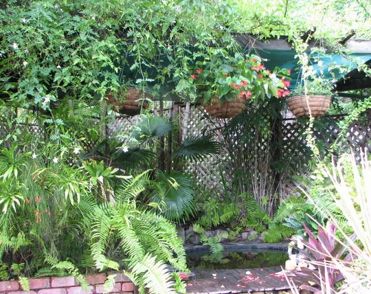 Moving around the courtyard garden