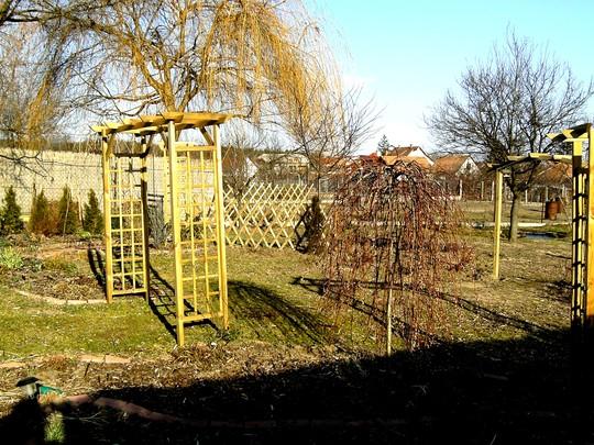 15 Feb 2008 back garden