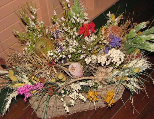 Dried Australian wildflowers