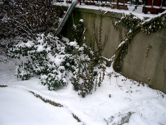Jan 2008