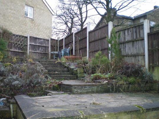 my garden in winter