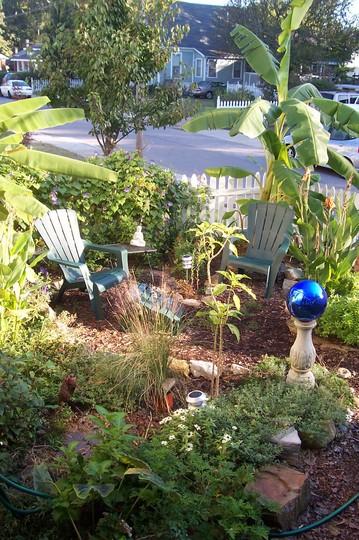 my front yard retreat