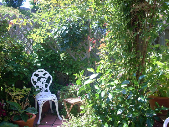 a little hide-away in the back garden. this is now where I have made a small rose garden last year
