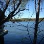 Ont.Landscape_046.jpg