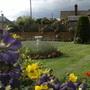 Paul's Garden
