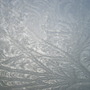 Frost on the greenhouse roof