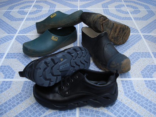 Spring Collection Shoes