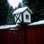 my mini shed