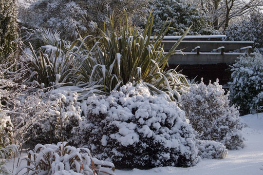 Winter view at Winsford Walled Gardens