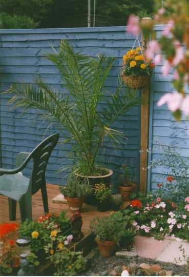 My Milford Garden