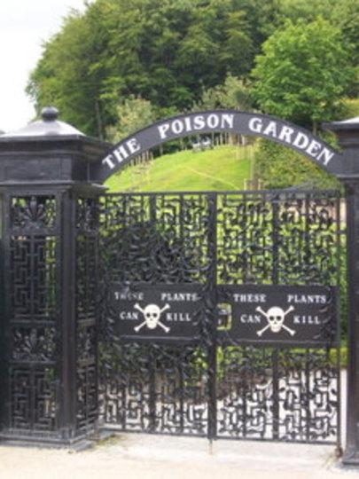 Poison Garden - Alnwick Gardens