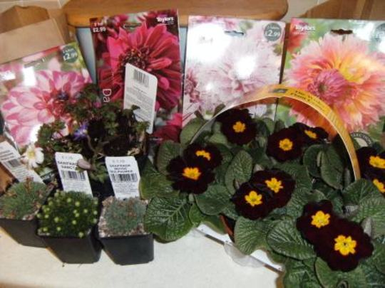 Pressies from Wisley