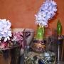 Hyacinth project