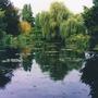 Monets garden.