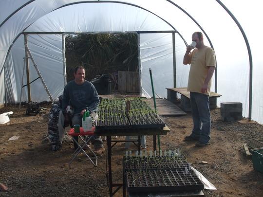 julian_and_his_tomato_seedlings.jpg
