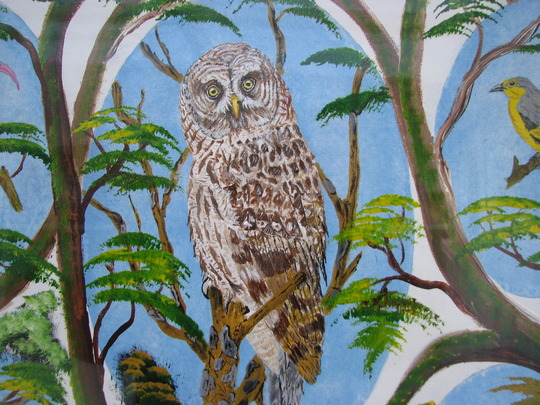 owl painting'