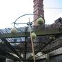 Home made bird feeder