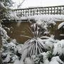 Garden_winter_017