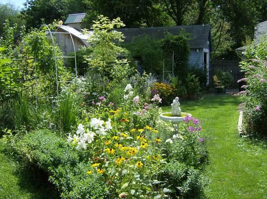 Back Yard View - June 2007