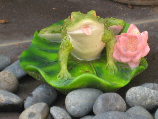 Lonely frog garden ornament