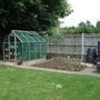 Lastyears veg garden