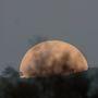Moonrise_7226