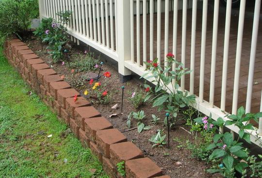 Finally got to do some gardening today.