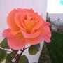 Algarve_08_064
