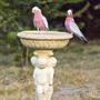 Bird Bath_3185s.jpg