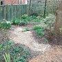 Old_rose_garden_2008.jpg