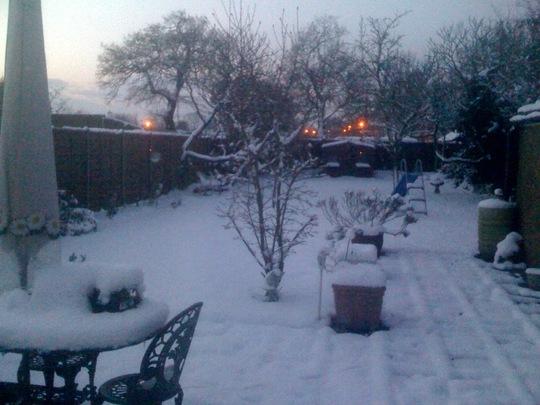 Snow in Feb 2009