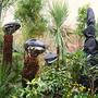 Tree ferns with hats (dicksonia antarctica, musa basjoo)