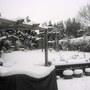 winter  Feb 2009