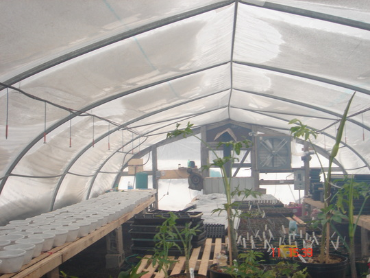 loris greenhouse