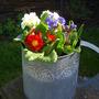 Spring_garden_09_010