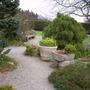 York_gate_garden_april_2007_00010