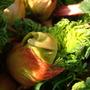 Rhubarb_3