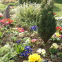 My spring flower bed
