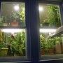 Windowout_001
