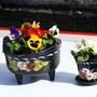 Narrowboat flowers