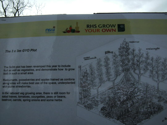 Printed information for a 3 x 3 Grow your own Plot.