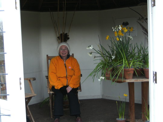 Me and the daffodils.
